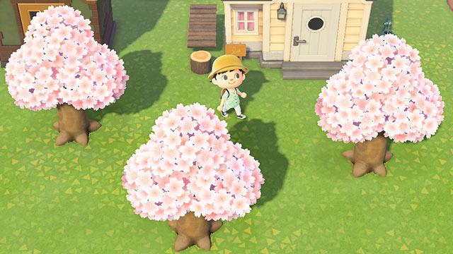 あつまれどうぶつの森 桜